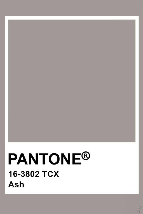 Ash Pantone