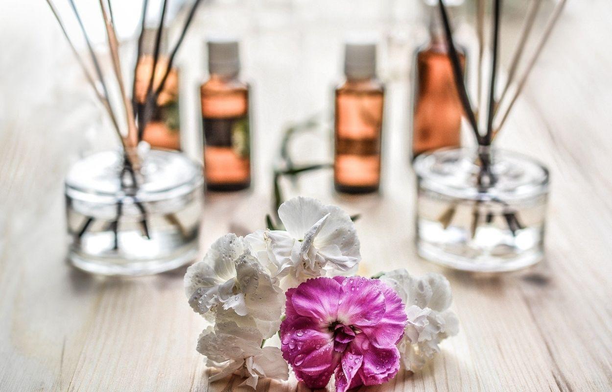 Imagem mostra plantas e essências - aromaterapia